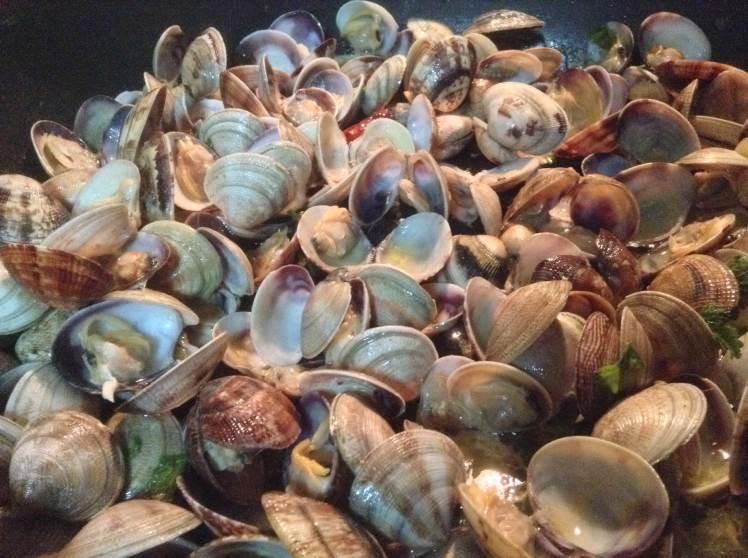 Vongole and Lupini di Mare (clams!)