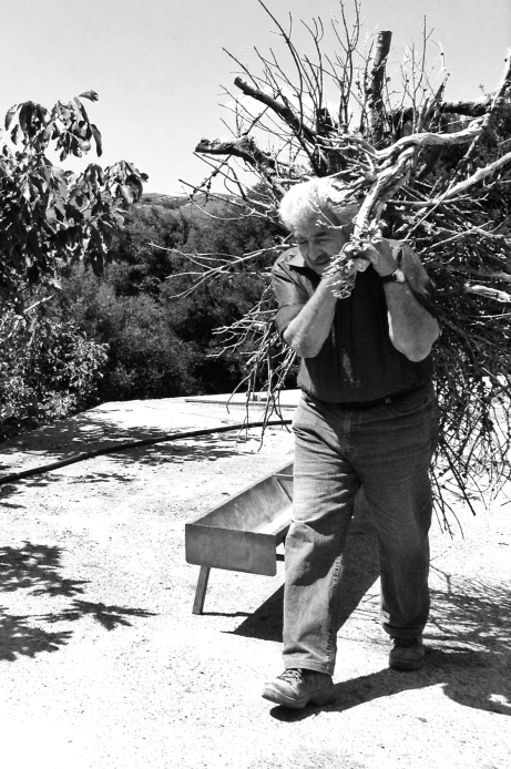 Yanni collecting wood for the fire