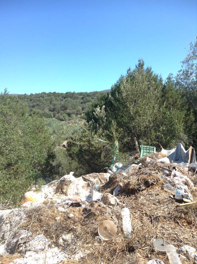 Fields of olive groves, where it's easy to find rubbish dumps