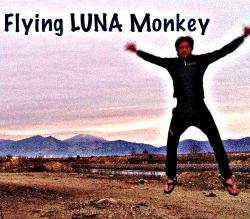 flying luna monkey
