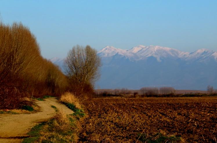 Wandering through Macedonia