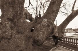 Some tree hugging!